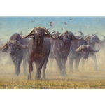 Buffalo Soldiers - herd of cape buffalo by John Banovich