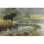 Autumn Overture - Bull Moose by Robert Bateman