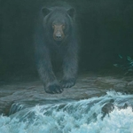 Big Black by Robert Bateman