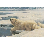 Arctic Family - Polar Bears by Robert Bateman