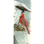 At the Feeder - Cardinal by Robert Bateman