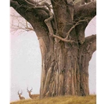 Baobab Tree and Impala by Robert Bateman