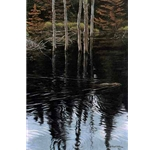 Beaver Pond Reflections by Robert Bateman