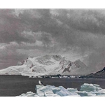 Antarctic Elements by Robert Bateman