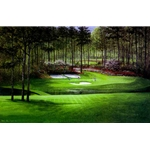 Augusta - Twelfth Hole by Peter Ellenshaw