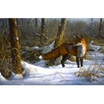 Chance Encounter red fox by wildlife artist Jim Hautman