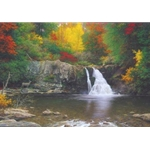 Autumn in the Smokies by Larry Dyke