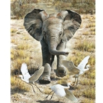 Flushing Egrets - elephant crossing dry grass by artist Carl Brenders