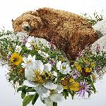 Bugged Bear by Bev Doolittle