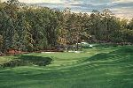 "The 11th Hole ""White Dogwood"" Augusta National Golf Club by Linda Hartough"