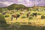Change of Fortune by Bradley Schmehl