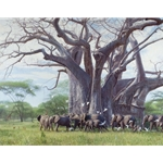 A Giant Among Giants - Elephants around baobab tree by John Banovich