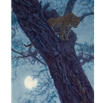 Hunter by the Moon - leopard in Acacia tree by John Banovich