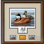 2015- 2016 Federal Duck Print EXECUTIVE EDITION - Ruddy Ducks by Jennifer Miller