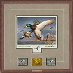 2018-2019 Federal Duck Stamp EXECUTIVE EDITION - Mallards by Robert Hautman