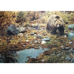 Trailblazer - Grizzly Bear by wildlife artist Carl Brenders