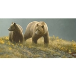 Alaska Light - Grizzly Bear by Robert Bateman