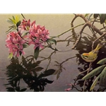 Golden-crowned Kinglet and Rhododendron by Robert Bateman