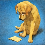 Reading Lab - Yellow lab by humor artist Will Bullas
