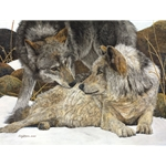 The Alphas - Wolf pair by Judy Larson