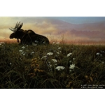 Daybreak - Moose by wilderness artist John Seerey-Lester