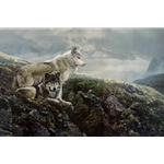 Above Timberline - Gray Wolves by artist Terry Isaac