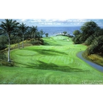 Mauna Kea - Eleventh Hole by Peter Ellenshaw