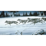 The Chase Wolf Pack by Maynard Reece
