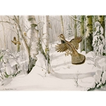 Heavy Snow Ruffed Grouse by wildlife artist Maynard Reece