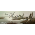 Misty Flight - Canada Geese by wildlife artist Maynard Reece