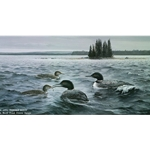 Offshore Lunch Common Loons by wildlife artist Maynard Reece