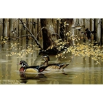 Seclusion Wood Ducks by wildlife artist Maynard Reece