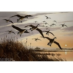 Sunset Canada Geese by Iowa artist Maynard Reece