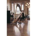 Private Recital - harp by artist Steve Hanks