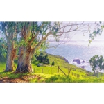 The Eucalyptus Coast by California landscape artist June Carey