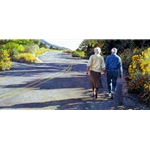 Young at Heart - older couple walk along road by artist Steve Hanks