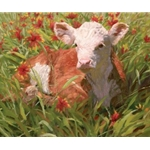 Under the Indian Blanket - Young calf by artist Bruce Greene