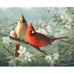 Orchard Cardinals apple blossoms by wildlife artist Joe Hautman