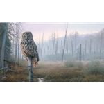 Silent Hunter - Great Gray Owl by wildlife artist Brent Townsend