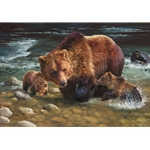Testing the Waters - grizzly family by wilderness artist Bonnie Marris