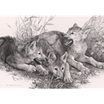 Waiting for Mom - wolf cubs by wildlife artist Carl Brenders