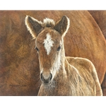 Wild in the Country - mare & foal by western artist Judy Larson
