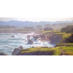 Mendocino - MacKerricher State Park coast by artist June Carey