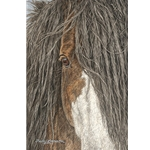 Fearless - Portrait of horse by Judy Larson