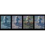 Apollo Moonscape, An Explorer Artist´s Vision - four panels by artist Alan Bean