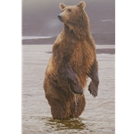 ~ Rising Expectations - Grizzly Bear standing upright by Daniel Smith
