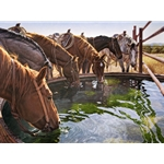 A Well Earned Drink - horses at the trough by cowboy artist Tim Cox