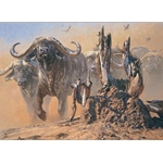 Cape Thunder - cape buffalo by John Banovich