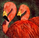 Our Ladies of the Front Lawn - Flamingo pair by artist Will Bullas