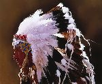 Eagle Feathers by Don Crowley